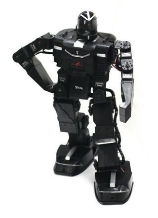 RoboPhilo