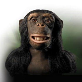 Wowwee - CHIMPANZEE Head