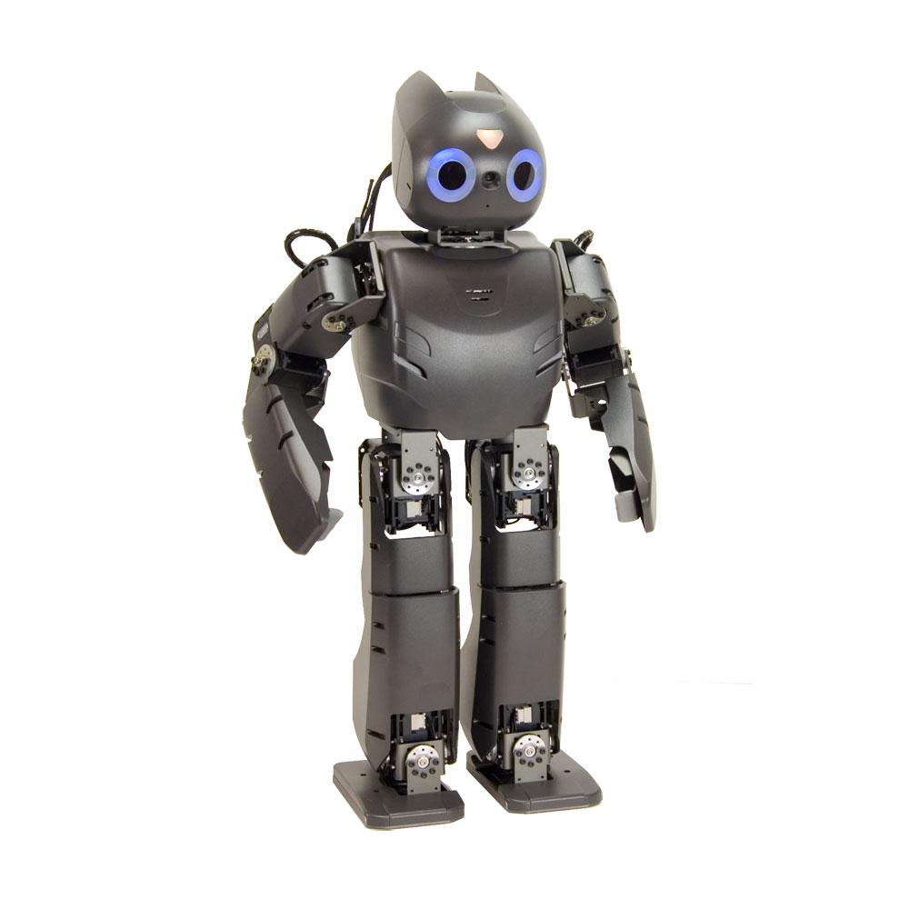 the development of humanoid robotics Development of the humanoid robot hubo-fx-1 jungho lee, kaist, republic of korea, jungho77@kaistackr jung-yup kim, kaist, republic of korea, kirk1@mclab3kaistackr.